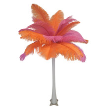 """Orange and Pink"" Ostrich Feather Centerpiece"