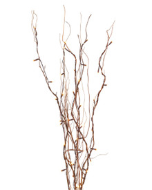"Case of 6 Willow Branch Convertible 39"" High"
