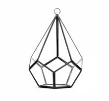 "4"" x 4"" Geometric Glass Terrarium, Undecahedron Tear drop, Choice of Gold or Black Frame - Case of 6"