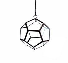 "6"" x 6"" Geometric Glass Terrarium, Dodecahedron, Black Frame - Case of 12"