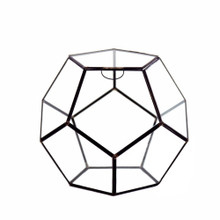 "9"" x 9"" Geometric Glass Terrarium, Dodecahedron, Black Frame - Case of 4"