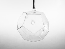 Dodecahedron Frameless Geometric Glass Terrarium - 12 Pieces
