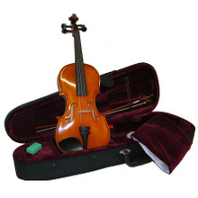 Hand Painted Oil Varnished Violin VN500-MP