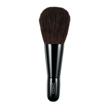 CHICCA Perfect Face Brush