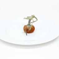 """2"""" Velvet Pumpkin"""