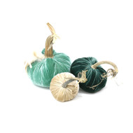 Velvet Pumpkin Trio with Feathers - Turquoise