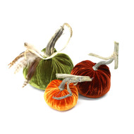 Velvet Pumpkin Trio with Feathers - Harvest