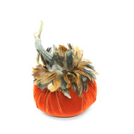 Apricot Velvet Pumpkin with Bronze Feathers