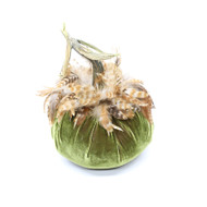 Cactus Velvet Pumpkin with Red Chinchilla Feathers