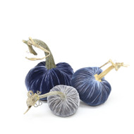 Velvet Pumpkin Trio - Blues