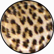 Leopard Print BR