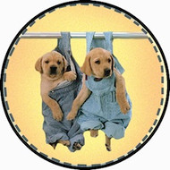 Coverall Pups BR