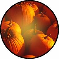 Pumpkins Galore BR