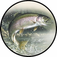Rainbow Trout BR