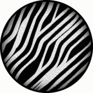 Zebra Print BR