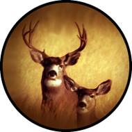 Oh Deer BR
