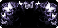 Flutterby Black & Purple