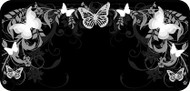 Flutterby Black & White
