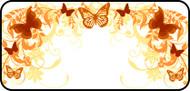 Flutterby Orange