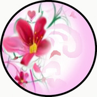 Hibiscus BR