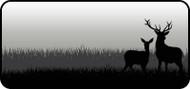 Boney Antlers Black