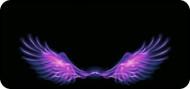 Flamed Wings Purple