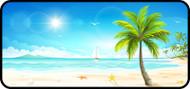 Dreaming Seaside
