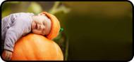 Pumpkin Dream