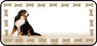 Bernese Mt Dog