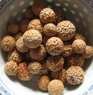 quandong seeds