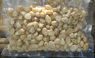 australian macadamia nut