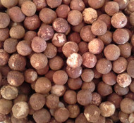 roasted sandalwood nuts
