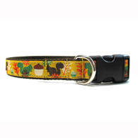 Go Nuts Collar and Leash