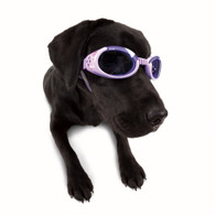 Doggles ILS Style
