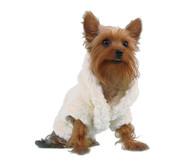 Kawai Dog Bathrobe
