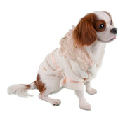 Principessa Dog Bathrobe