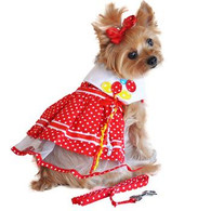 Doggie Design Red Polka Dot Balloon Dog Dress with Matching Leash