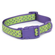 """Zack and Zoey Brite Polka Dot Collar - Ultra Violet 18-26"""""""
