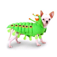 Pampet Caterpillar Costume