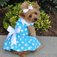Blue Polka-Dot Dress with matching leash