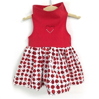 Red Top with Lady Bug Print Skirt  Dress
