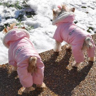 Ruffin It Pink Snowsuit