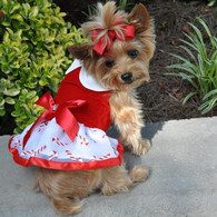 Holiday Candy Cane Harness Dress