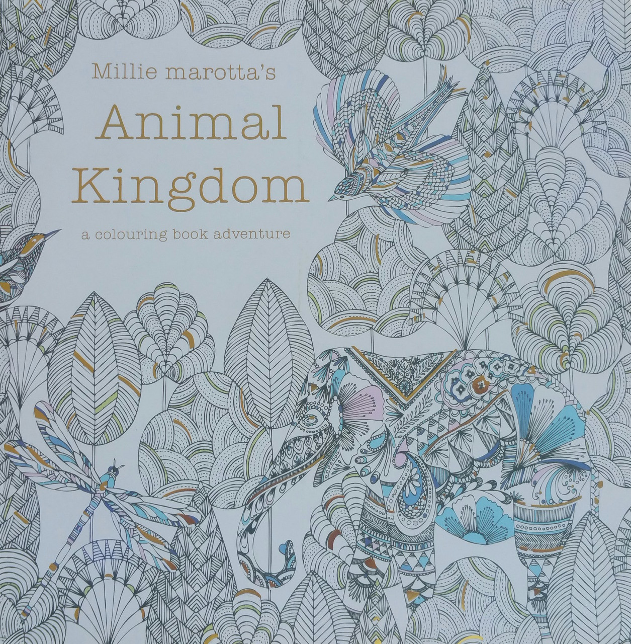 Animal Kingdom Colouring Book Adventure : Animal Kingdom A Colouring Book Adventure
