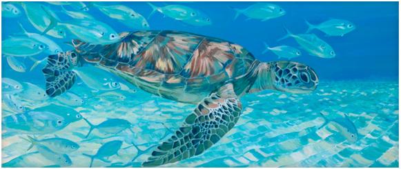 turtle-harmony.jpg