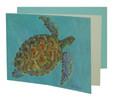 Hawksbill Turtle  Card