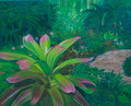Pink and Green Bromiliad by Sue Trew
