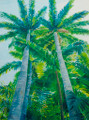 Towering Palms by Sue Trew