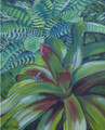 Colourful Bromiliads with a shy lizard by Sue Trew