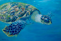 Hawksbill turtle by Sue Trew